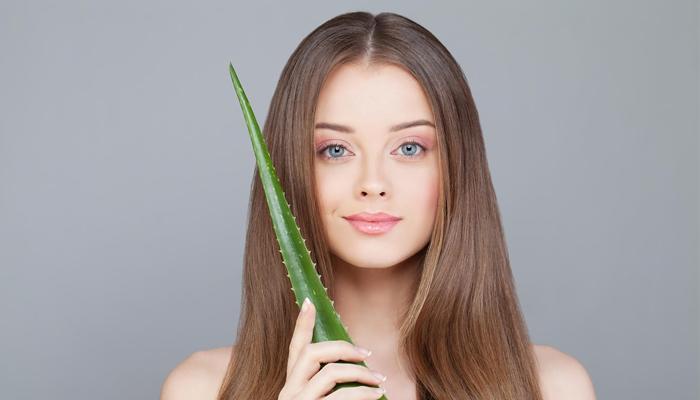 Алоэ от выпадения волос в домашних условиях: рецепты, отзывы