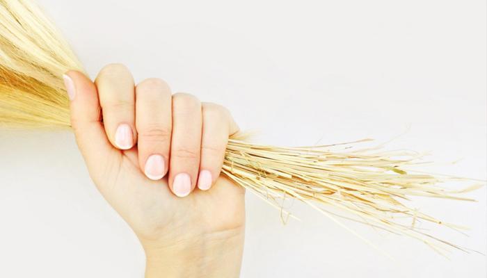 Что делать с сухими волосами в домашних условиях, в салоне