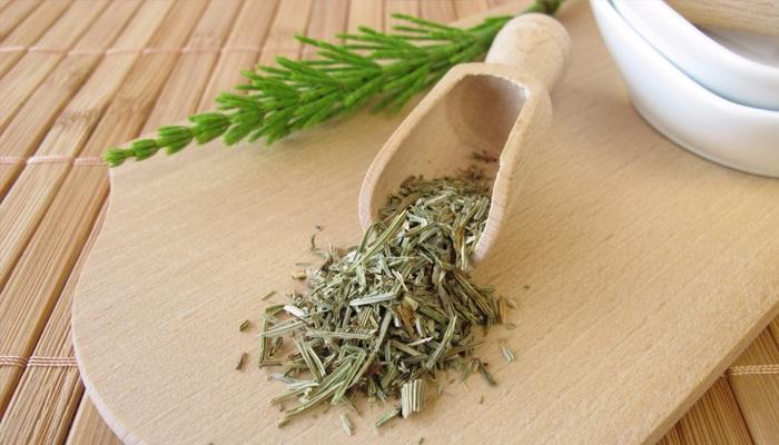 Хвощ полевой для волос: лечебные свойства, применение, отзывы