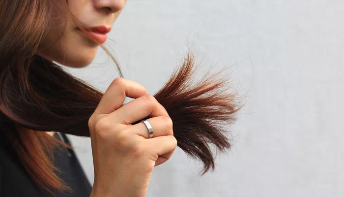 Сухость кончиков волос: лечить в домашних условиях
