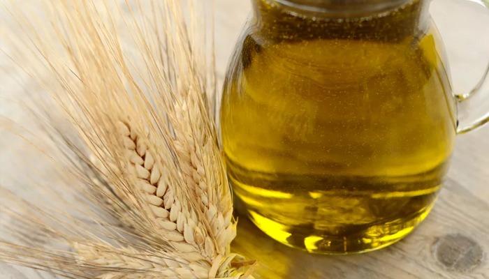 Масло зародышей пшеницы для волос: отзывы с фото до и после